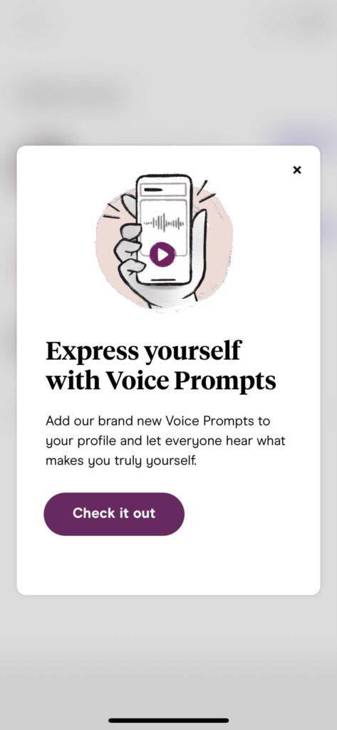 voice prompts on Hinge